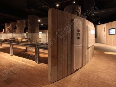 Gallo-Romeins Museum Tongeren is Europees Museum van het Jaar