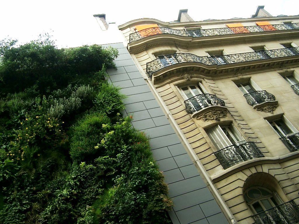 Groene gevel in Parijs