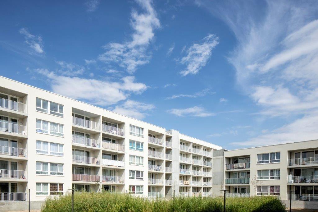 Central Gardens (B2Ai) : habitations sociales avec une petite touche verte