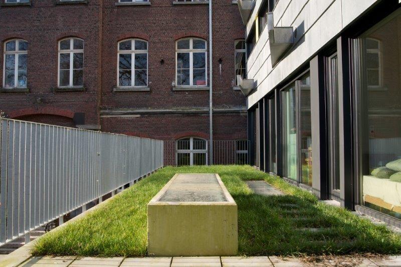 De (deels intensieve, deels extensieve) daktuin vormt een rustpunt in de ingesloten buitenruimte van de school. (Foto: Nicolas Bracquez)