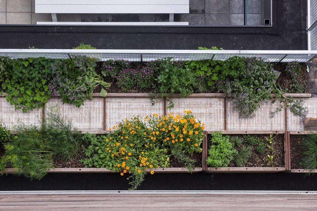 Het dak, de vijfde gevel van een gebouw: collectieve moestuin op bedrijvencentrum