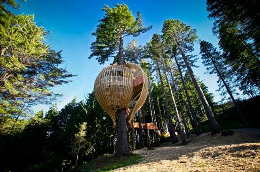 1. Yellow Treehouse Restaurant / Pacific Environments