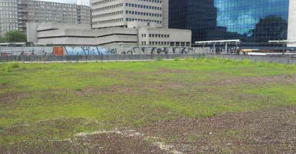 Het gras wordt bewaterd met ingegraven cups.