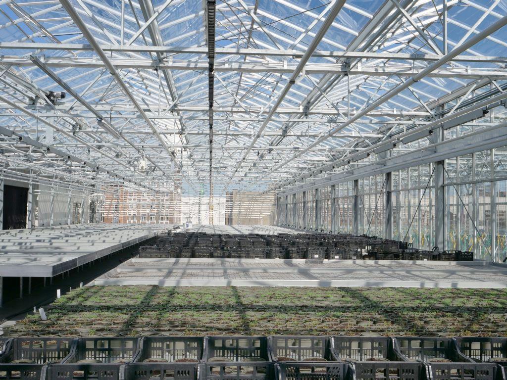 Primeur in urban farming op grote schaal in Anderlecht