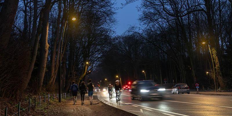 Een primeur in België: verlichtingstest op bestaande armaturen in Ter Kamerenbos
