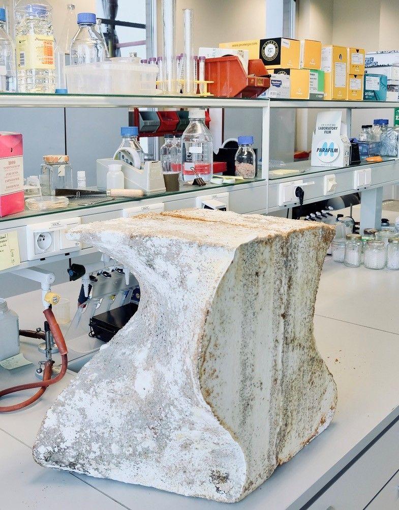 Architecturale bekistingen uit myceliummateriaal vervaardigd met behulp van robots.
