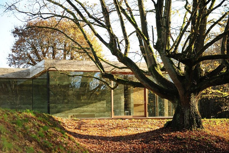 Lauréat ex aequo dans la catégorie Habitat indivbiduel : maison de béton et de verre à l'ombre d'un chêne centenaire, à Bousval, par l'Atelier d'architecture Bruno Erpicum & partenaires