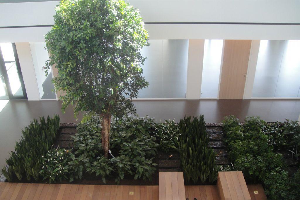 Quelques conseils pour créer un jardin dans un atrium