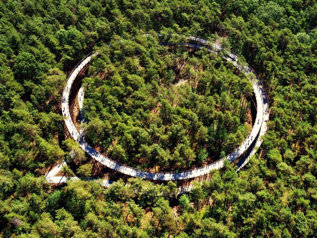 Fietsen door de bomen, Hechtel-Eksel