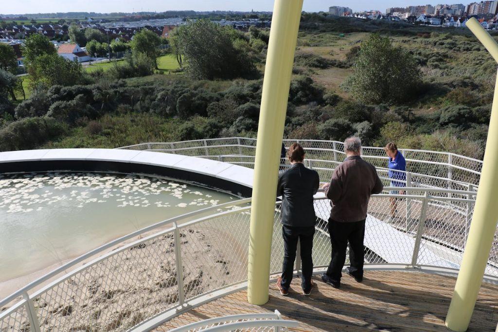 Un étang artificiel a été créé sur le socle en briques, afin de faire écho à l'ancien château d'eau et aux mares pour amphibiens présentes dans la réserve naturelle.