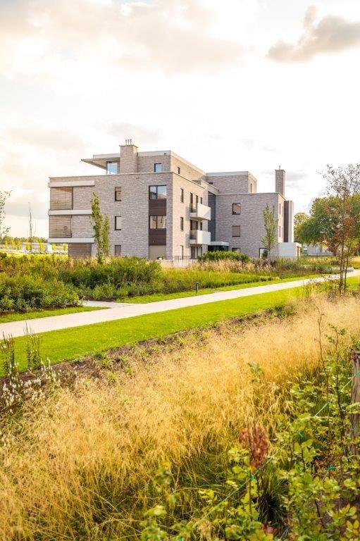 De architectuur en de lay-out van de Sterea-gebouwen zijn volledig geënt op het groene kader waarin ze zich bevinden. (Beeld: SumProject)