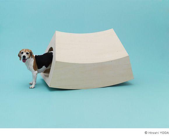 MVRDV ontwierp het 'Beagle House', een hok speciaal ontworpen om de kleine jachthond te prikkelen.