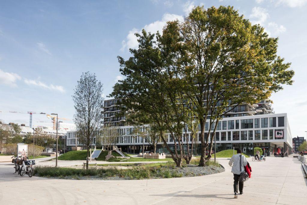 Een aantal bomen die er reeds vóór de totstandkoming van het Schengenplein stonden, werden naar een 'bomenparking' gebracht en na de werken teruggeplaatst