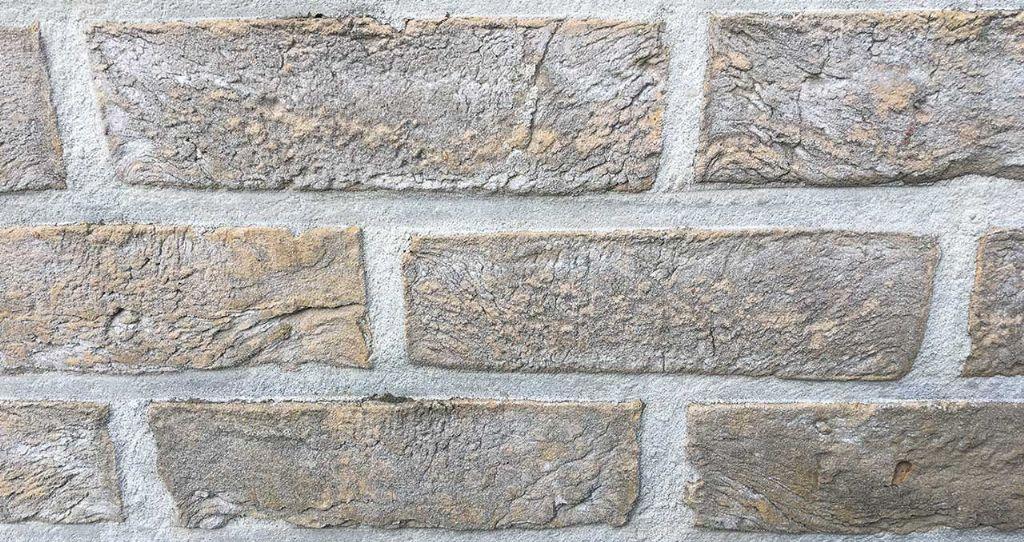 Verschijning van late gipsuitbloeiingen op baksteenmetselwerk