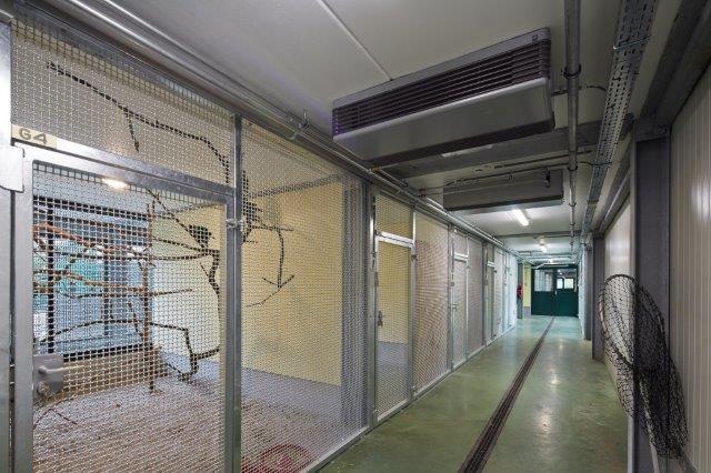 Door de diversiteit aan kooien – klein en groot (tot zes meter hoog), licht en donker, warm en koel – is er in principe voor elk dier plaats in het gebouw.