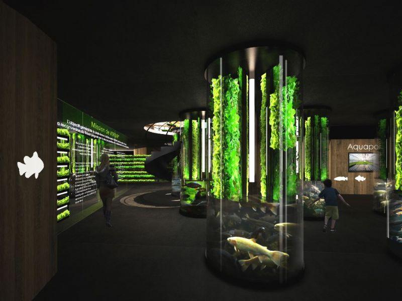 In de grot worden tentoonstellingen en wetenschappelijke lezingen georganiseerd.