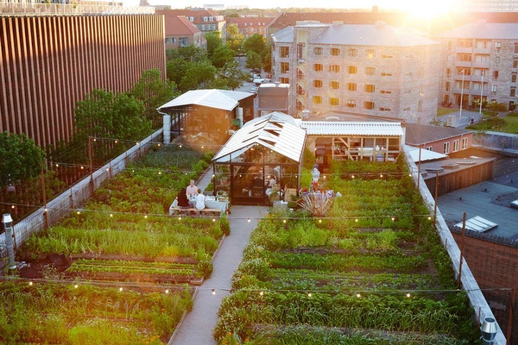 Une toiture verte comme extension de l'espace personnel de la maison