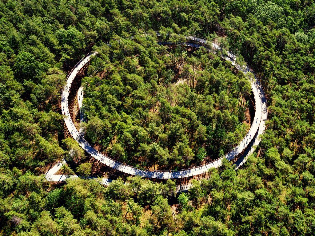 Fietsen door de bomen over brug uit cortenstaal
