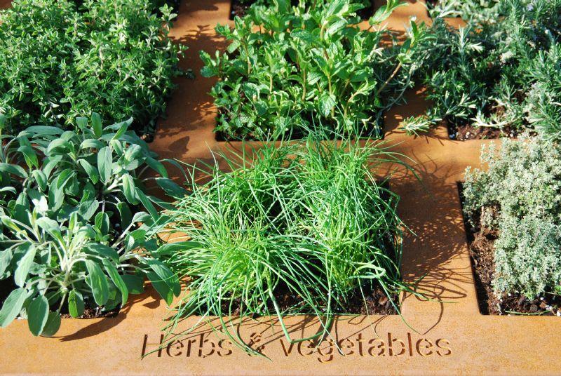 Herbs & Vegetables is de geknipte oplossing voor een eigen miniatuurmoestuin.