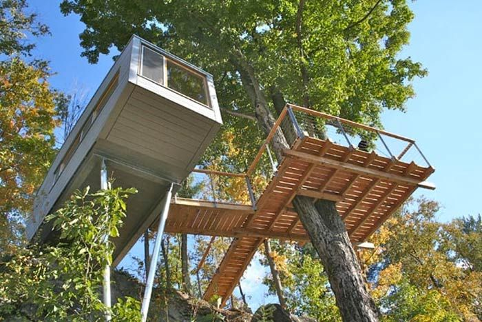4. Cliff Treehouse / baumraum