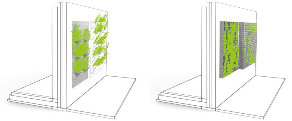 Groene wanden voor duurzame gebouwen en steden