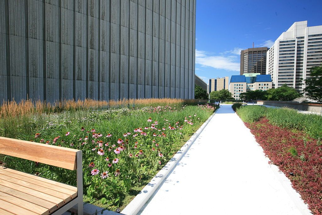 """""""Zowel voor intensieve als extensieve groendaken raden we het gebruik van gecertificeerde ATG-producten aan – lees: bitumen dakbanen die voldoen aan de normen met betrekking tot de weerstand tegen worteldoorboring"""", aldus Bitubel.(Foto: Toronto City Hall)"""