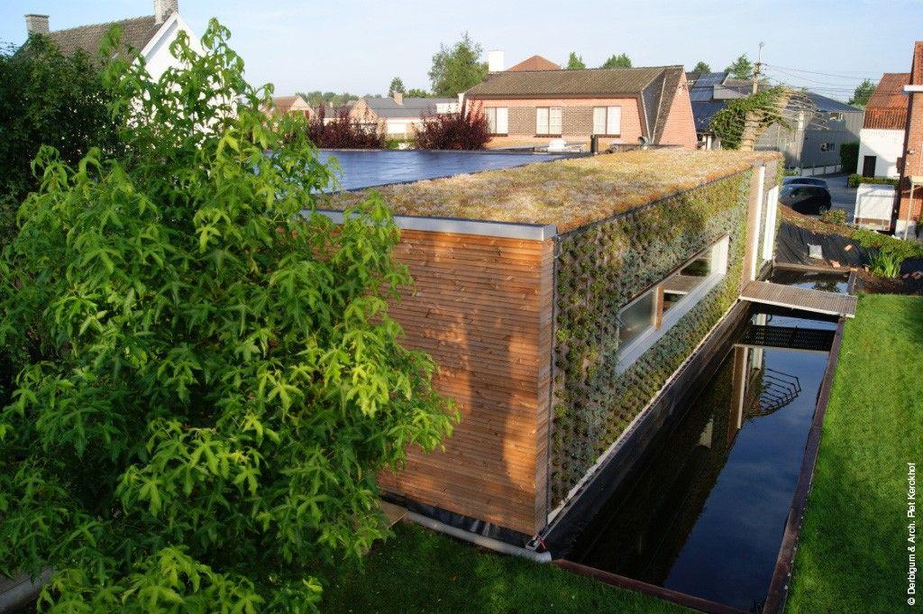 Groene dak op een passief kantoor (Aalter) - Architect Piet Kerckhof