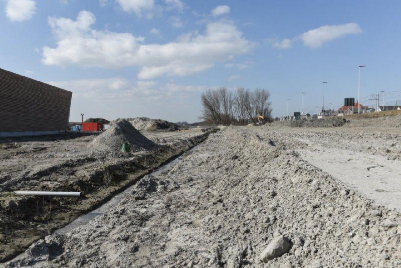 Stevin-project in Zeebrugge kiest voor riettegels