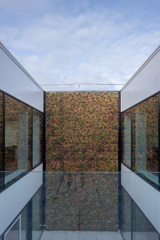 De centrale patio met groengevel geeft het nieuwe kantoorvolume een bijzonder cachet. (Beeld: Wesley Nulens Fotografie)