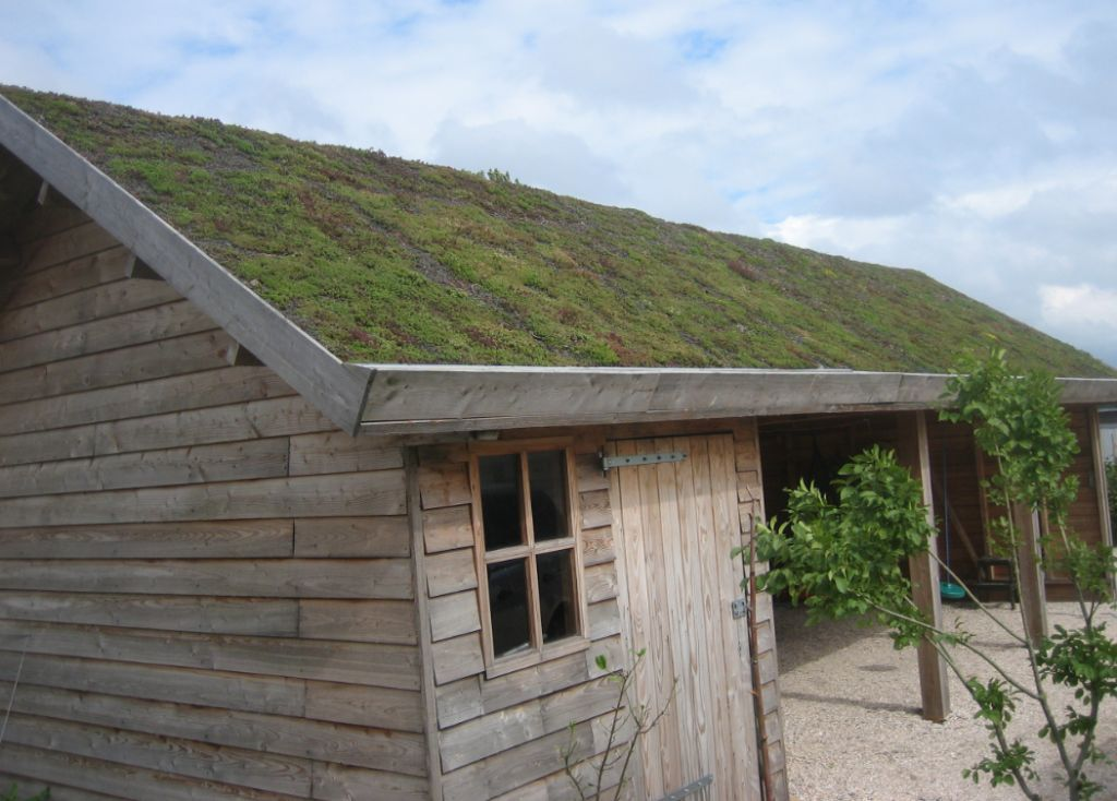 De multifunctionaliteit van daken