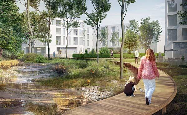 Het mensluwe moerasbos wordt een ecologische schakel in het groen blauwe netwerk in het hart van het bouwblok.