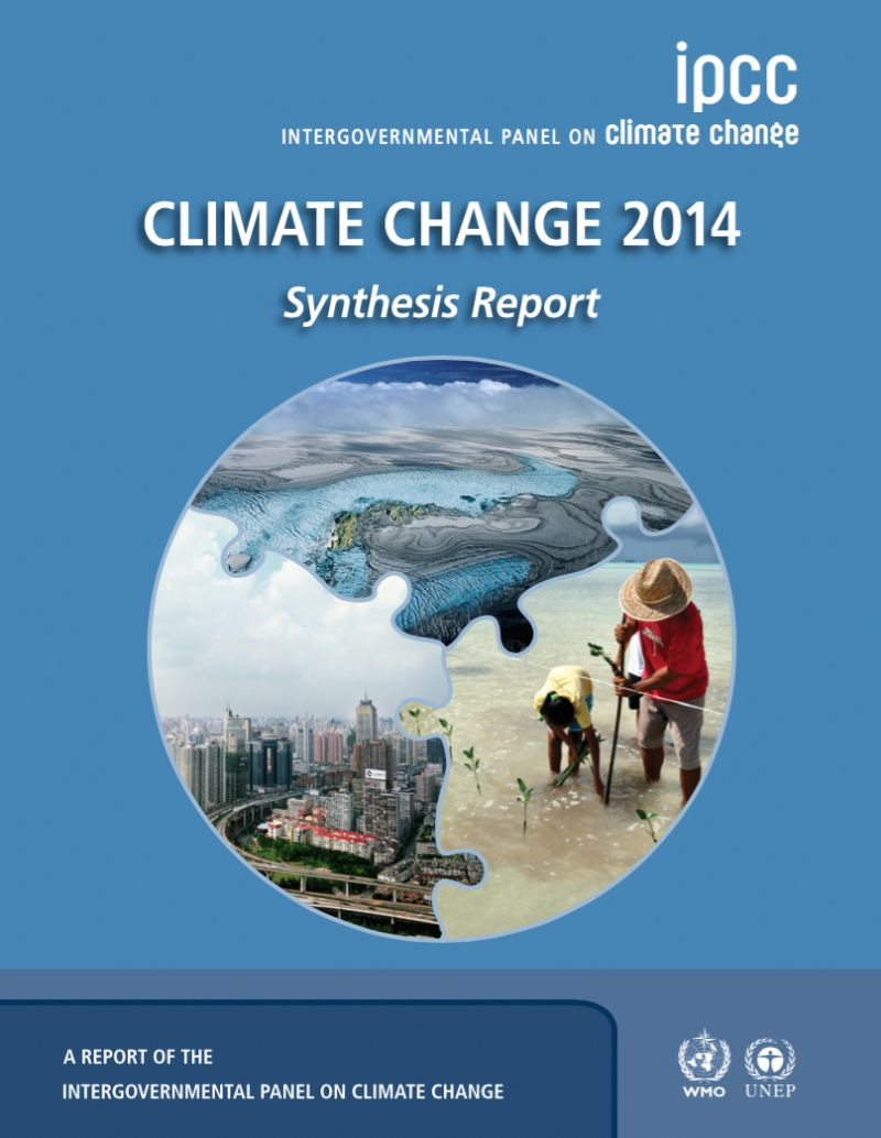 Intergovernmental Panel on Climate Change (IPCC) report