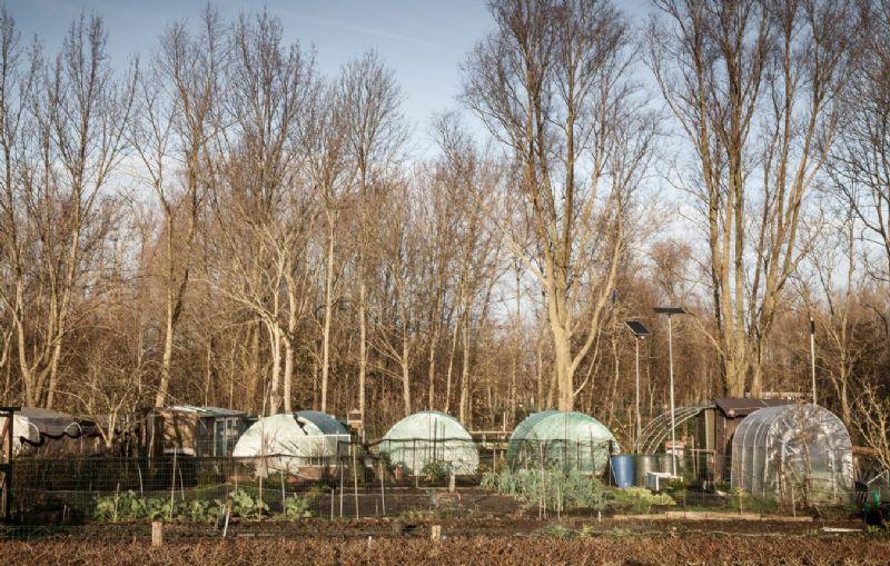 Project 4: Oostende - Landbouwpark Stene