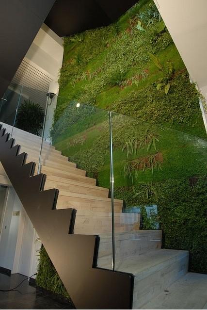 Bezoekers zien groen in inkomhal De Boer Green Roof Solutions