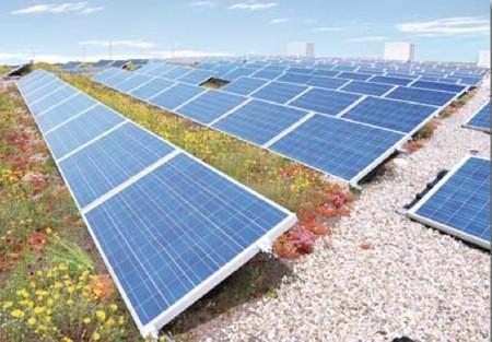 Zonne-energie op een groendak