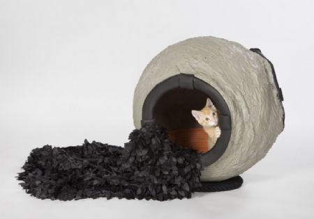Raar maar Waar: 11 architecturale kattenhuisjes)