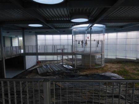 Silex's, centre d'interprétation des minières néolithiques de Spiennes_6