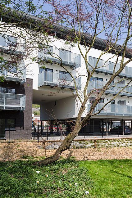 Appartements basse énergie rue Morinval_2
