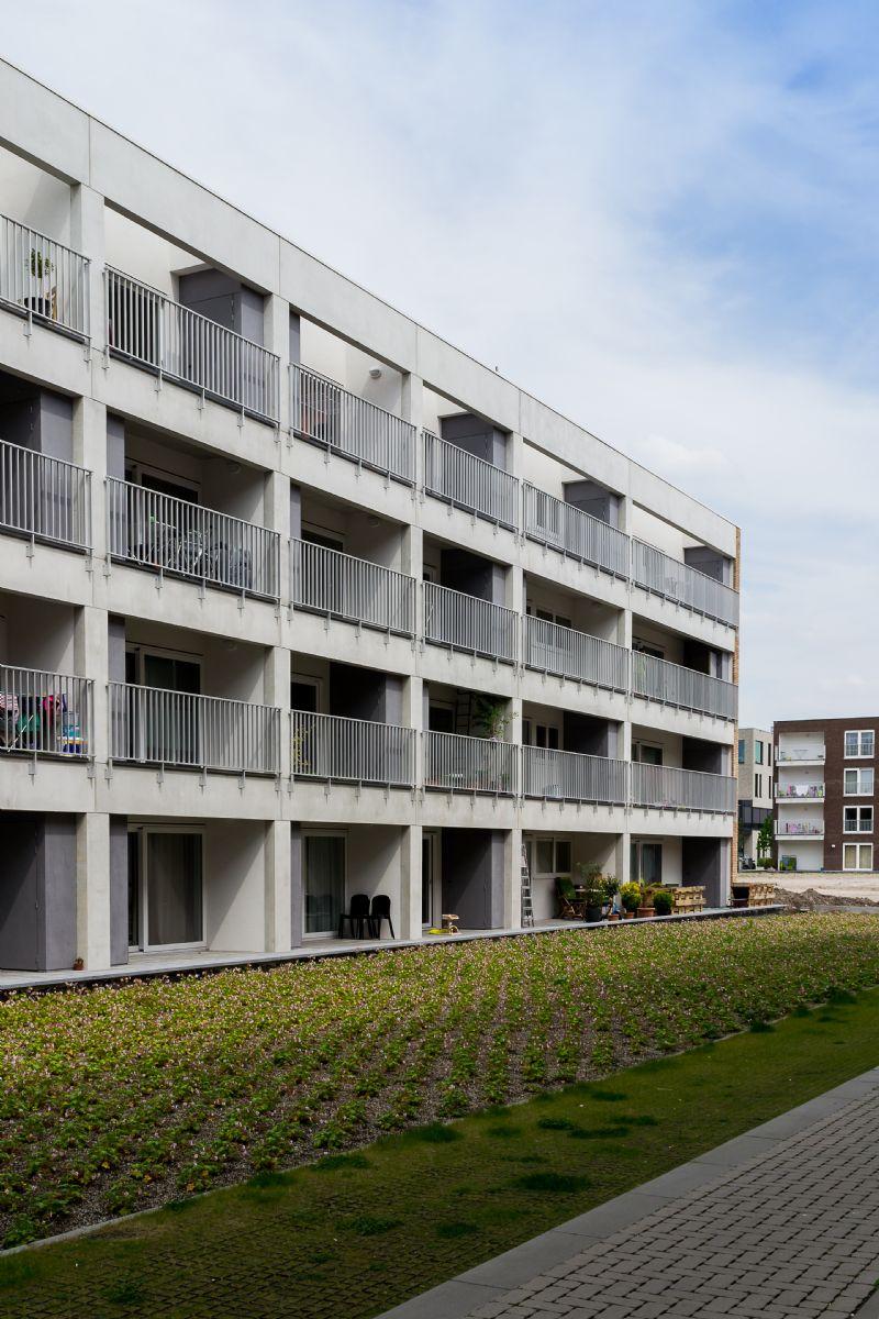 Alsberghe-Van Oost (blok R & blok I)