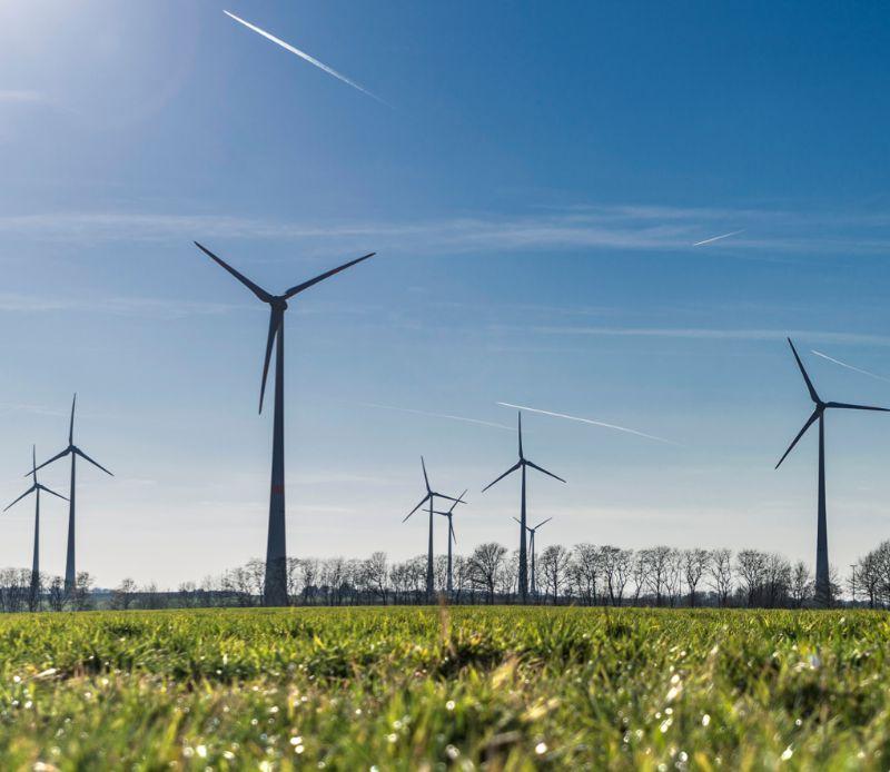Windturbines Gent Zeehaven